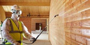 Что нужно знать, чтоб продлить жизнь деревянным строениям