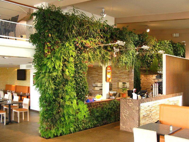 Вертикальное озеленение строительство хамама, озеленение.